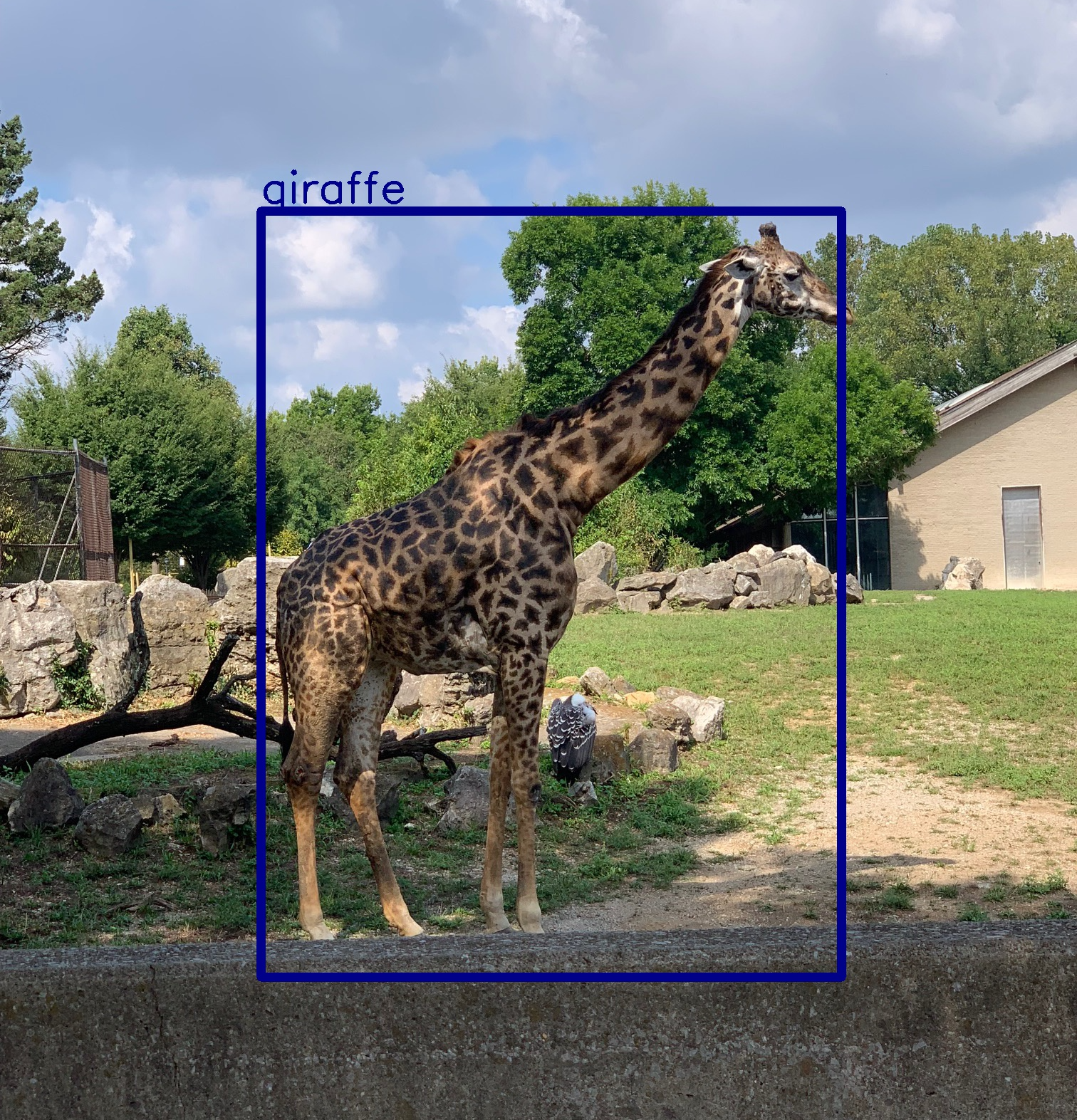 A Beginner's Guide to Object Detection